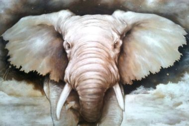 Dumbo_Albaura_Lorenzo_Fontana-1024x768